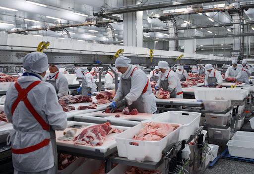 Tehlikeli ve Çok Tehlikeli İşlerde Et ve Et Ürünleri İşlemeciliği